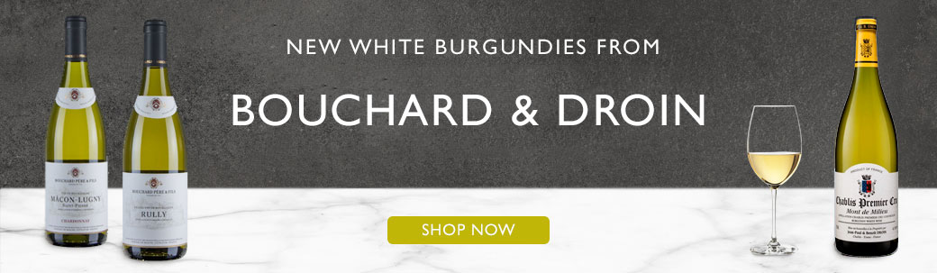 Bouchard & Droin White Burgundy