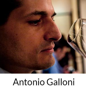 Antonio Galloni
