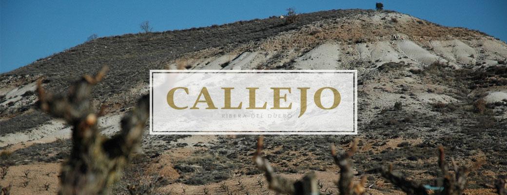 Callejo header